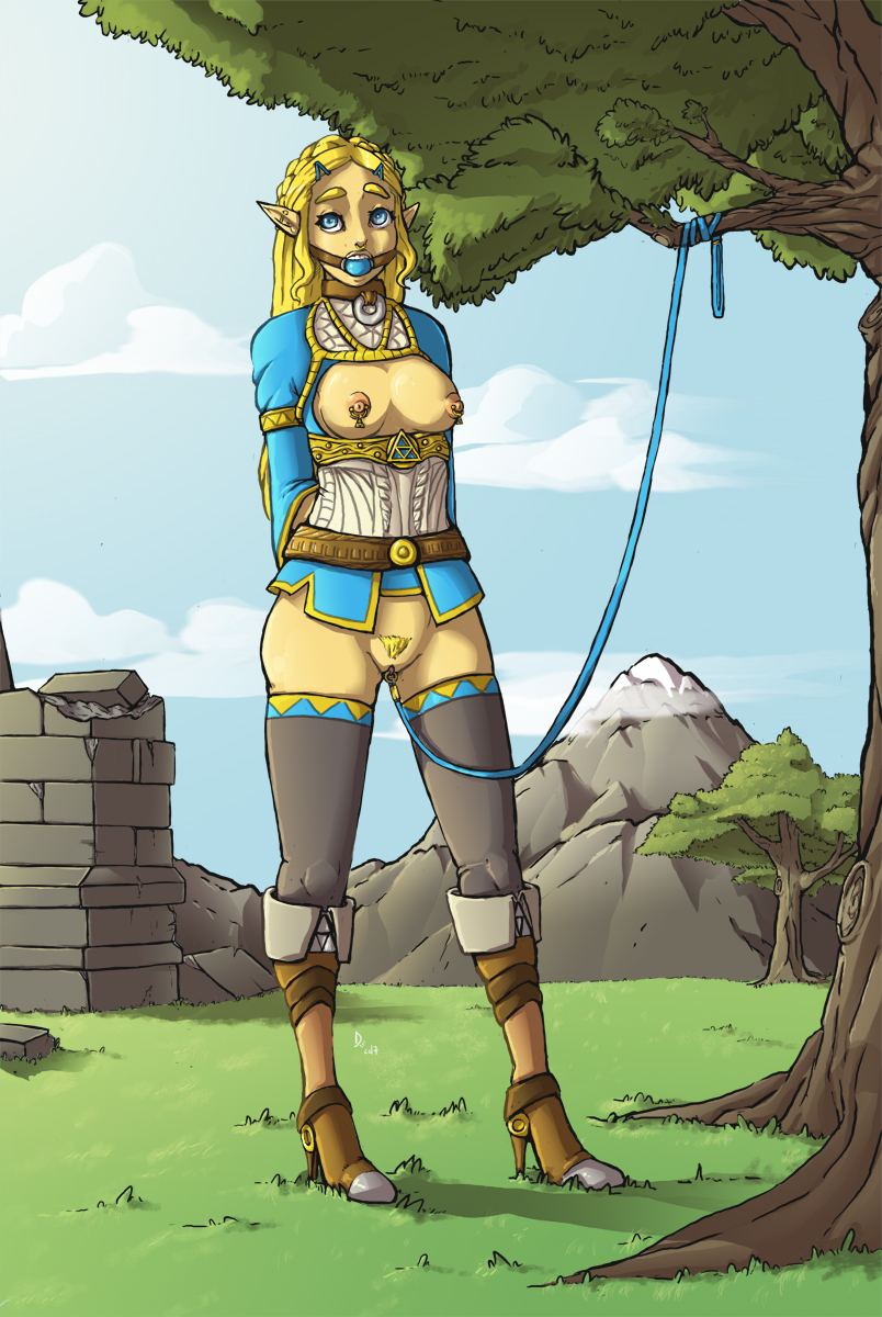 of zelda breath the naked wild Stay at home mom shadbase