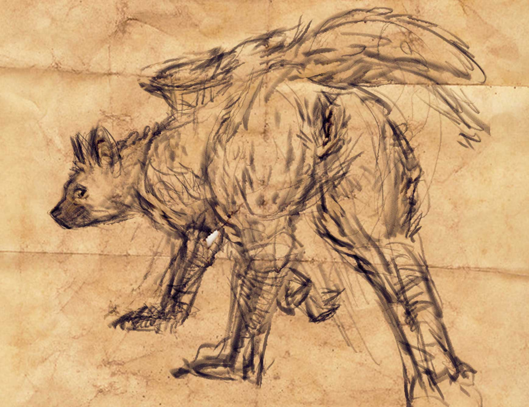 trico evil guardian last the Ori and the blind forest gif
